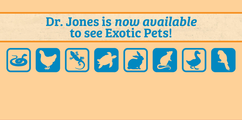 AZTEC-web-slider-exotics-march20-update