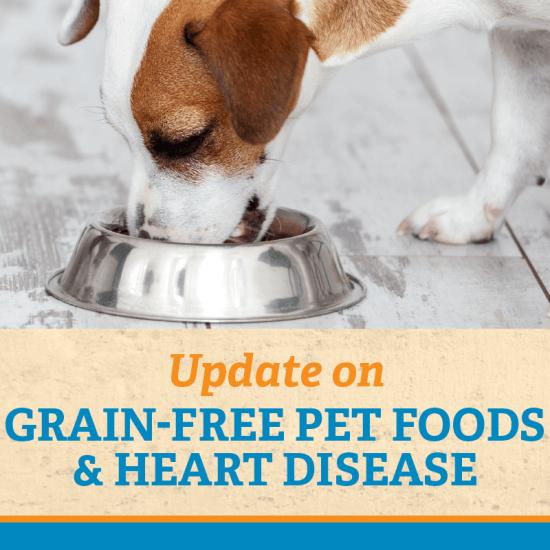 Update: Grain-Free Pet Foods & Heart Disease